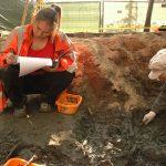 Opgegraven botjes naar laboratorium voor onderzoek