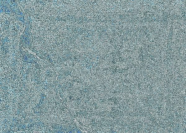 Haardplaat detail wapen van de Oppergelderse familie Van Eijll